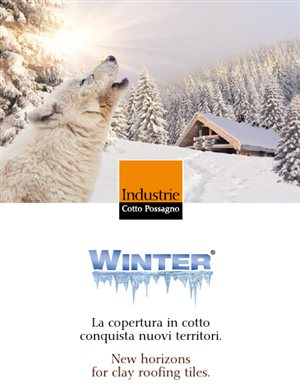 cottopossagno_winter